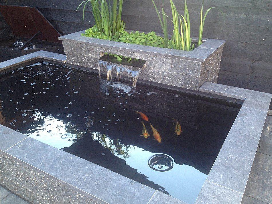 Koivijver met plantenfilter scherpenzeel waterwel for Aanleg koivijver